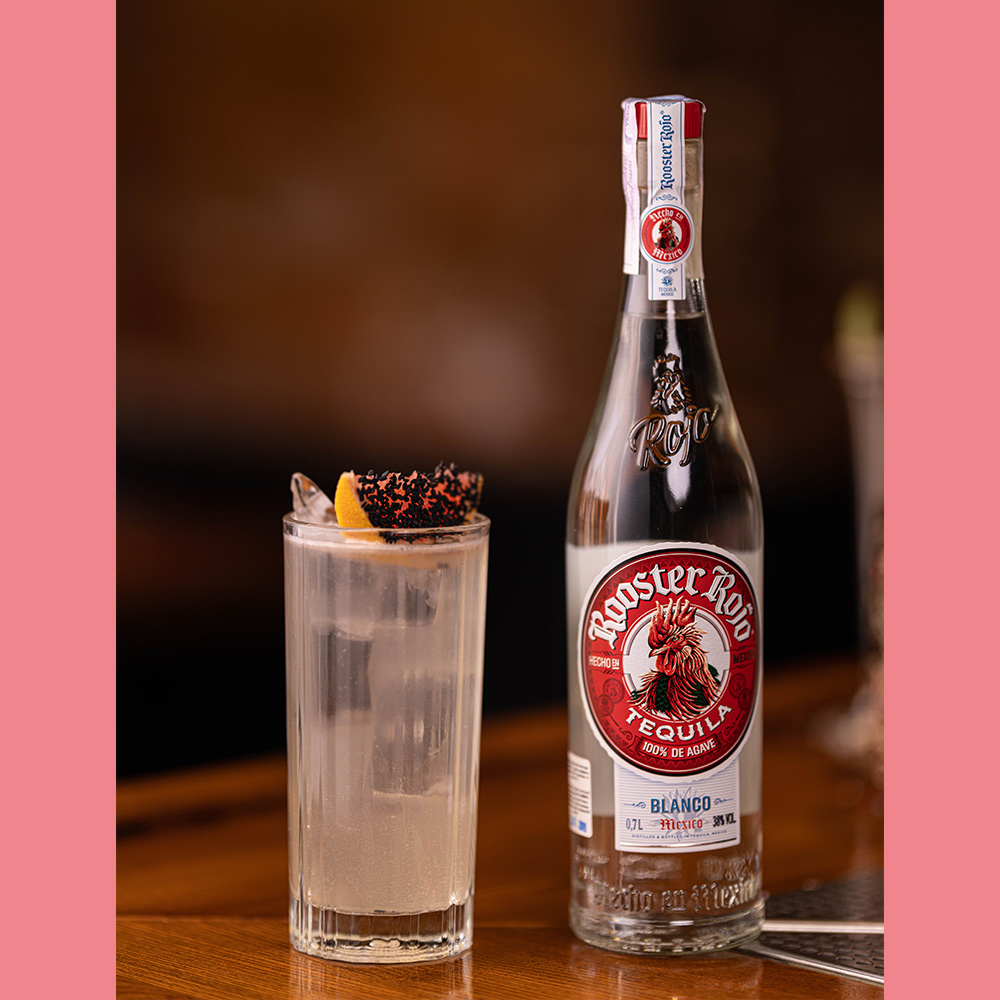 ROOSTER ROJO Paloma