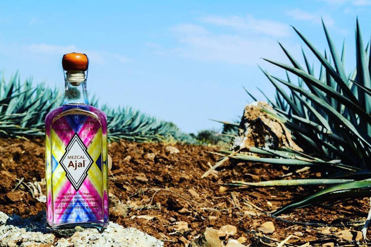 メスカル「アハル」ブランドセミナー
